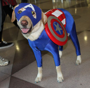 arf-captain-america